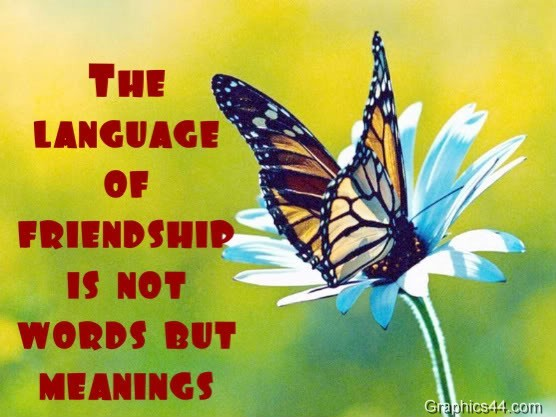 Friendship Quotes About Butterflies : Butterfly friendship quotes quotesgram