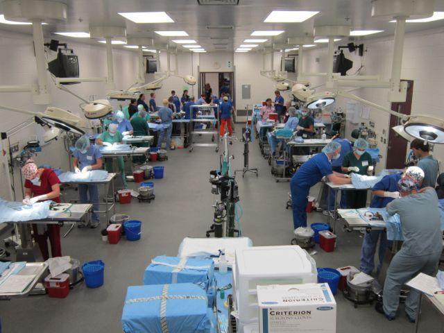 S Mark In Operating Room