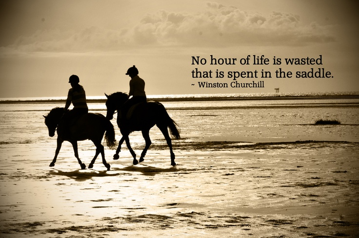 Famous Quotes About Horseback Riding Quotesgram