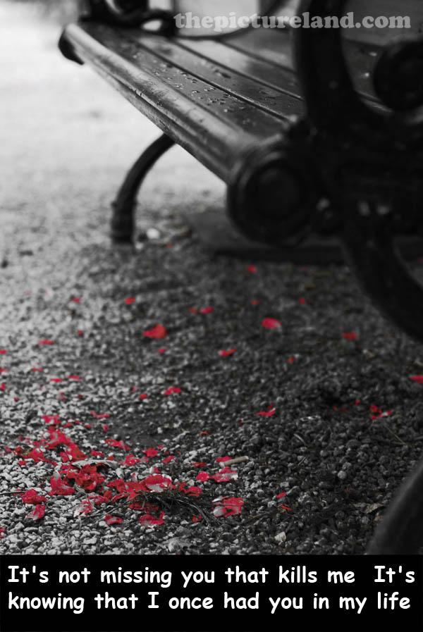 Beautiful Sad Love Quotes: Beautiful Sad Quotes. QuotesGram
