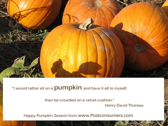 Quotes about pumpkins quotesgram
