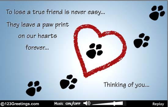 Rip Dog Quotes Quotesgram