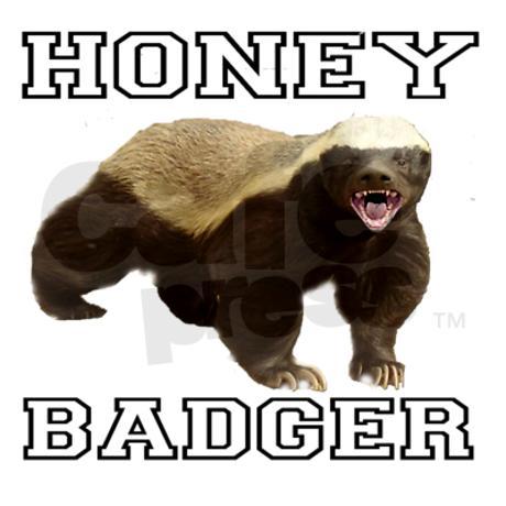 Honey Badger Funny Quotes Quotesgram