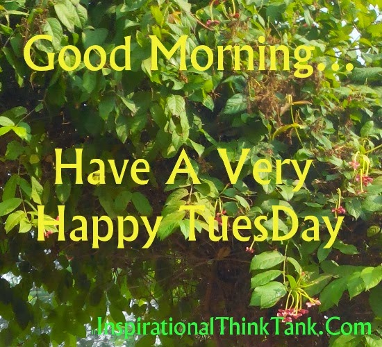 Tuesday Morning Inspirational Quotes: Tuesday Morning Motivational Quotes Truth. QuotesGram