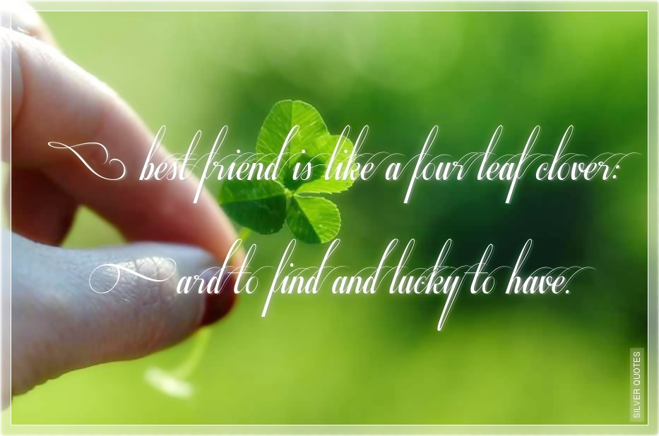 friendship last leaf We will write a custom essay sample on the last leaf by o henry  the ties that bound her to friendship and to  there the night that the last leaf.