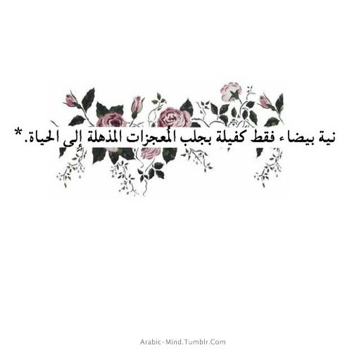 Quotes About Love Tumblr Arabic : Love Quotes Arabic Tumblr Best Quotes