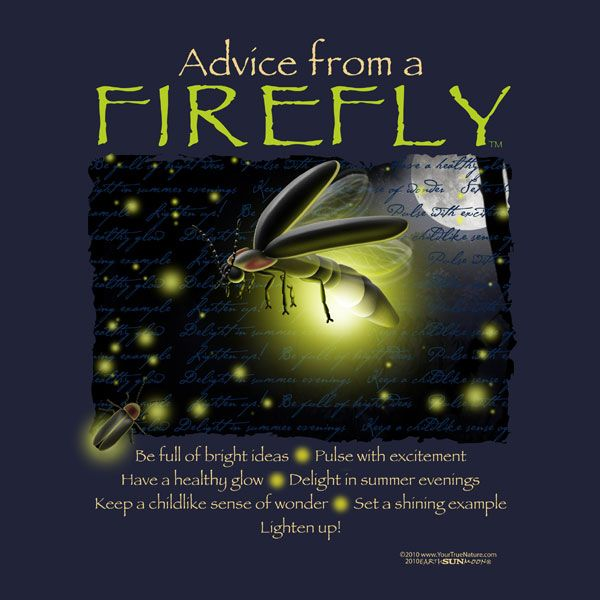 Firefly Light Quotes