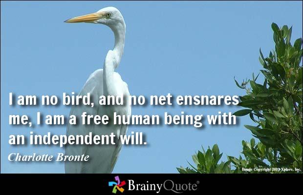Phoenix Bird Quotes Sayings. QuotesGram