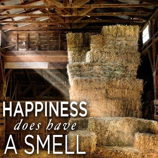 Farm Girl Quotes Funny. QuotesGram