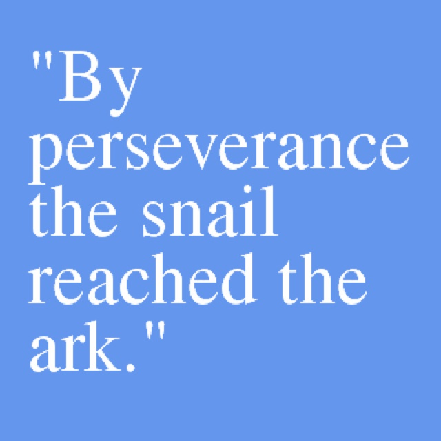 Persistence Motivational Quotes: One Word Perseverance Quotes. QuotesGram
