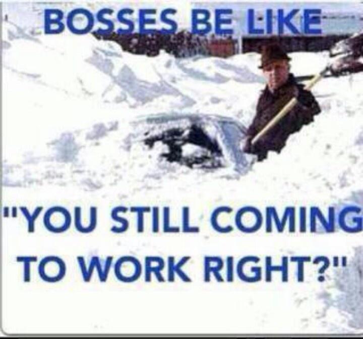 funny snow storm wallpaper - photo #29