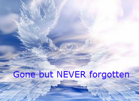 Gone But Not Forgotten Quotes Death. QuotesGram