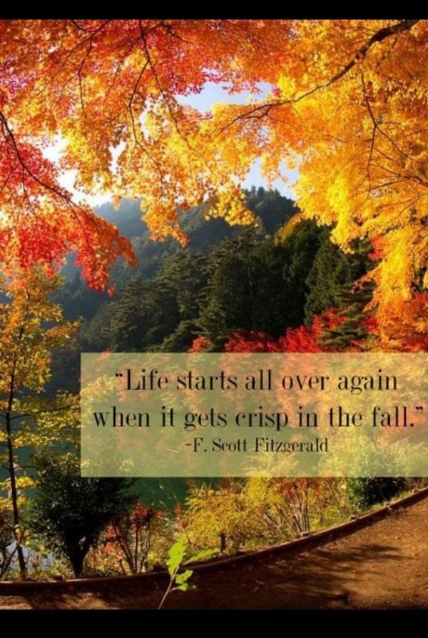 fall quotes autumn quotesgram