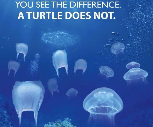 Plastic Pollution Quotes