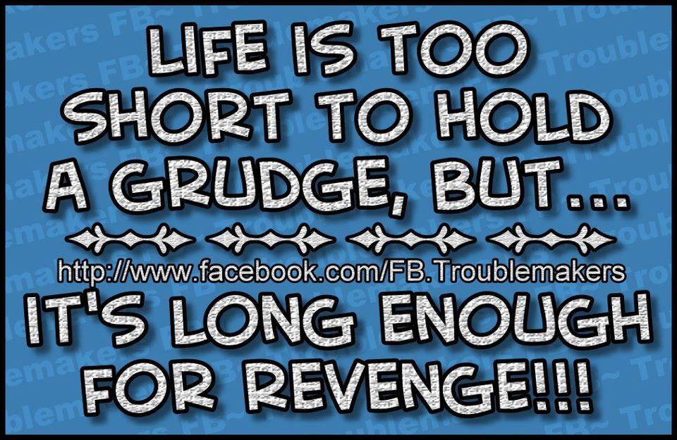 Irish Grudges Quotes. QuotesGram