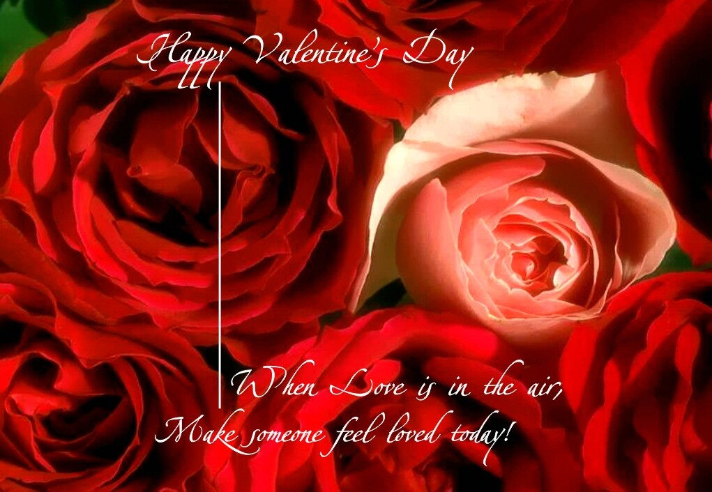 funny dirty valentines day quotes - Dirty Funny Valentines Quotes QuotesGram