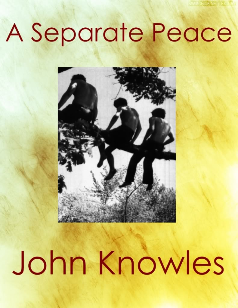 "an essay on a separate peace ""relational processes and identity formation in adolescence: the example of a separate peace"" genetic, social, and general monographs 121 (november, 1995)."