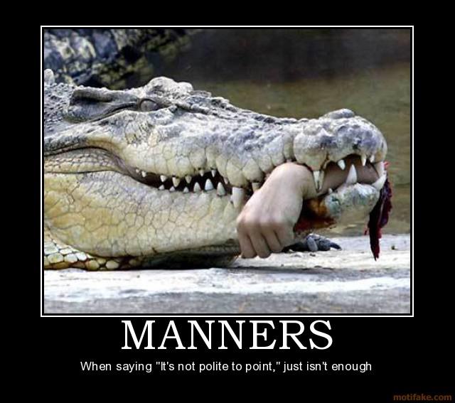 Alligator Jokes Quotes Quotesgram