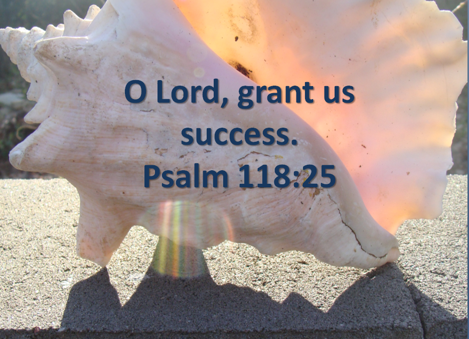 Inspirational Quotes From The Bible About Success