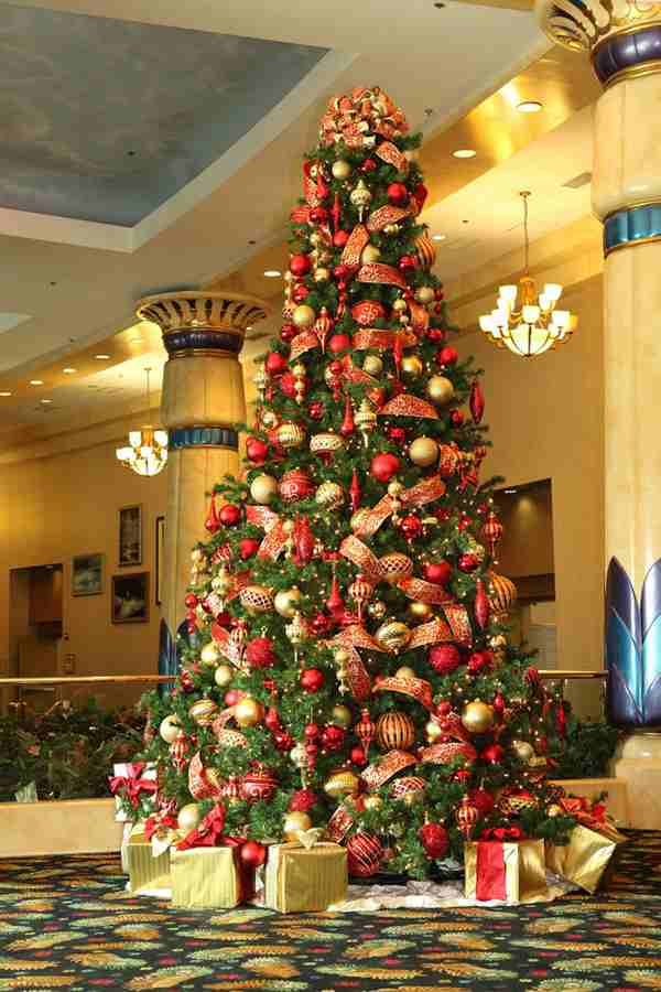 Ellen Degeneres Christmas Tree