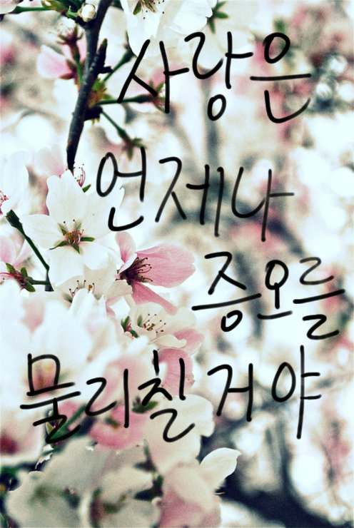 Korean cute Love Wallpaper : Korean Quotes. QuotesGram