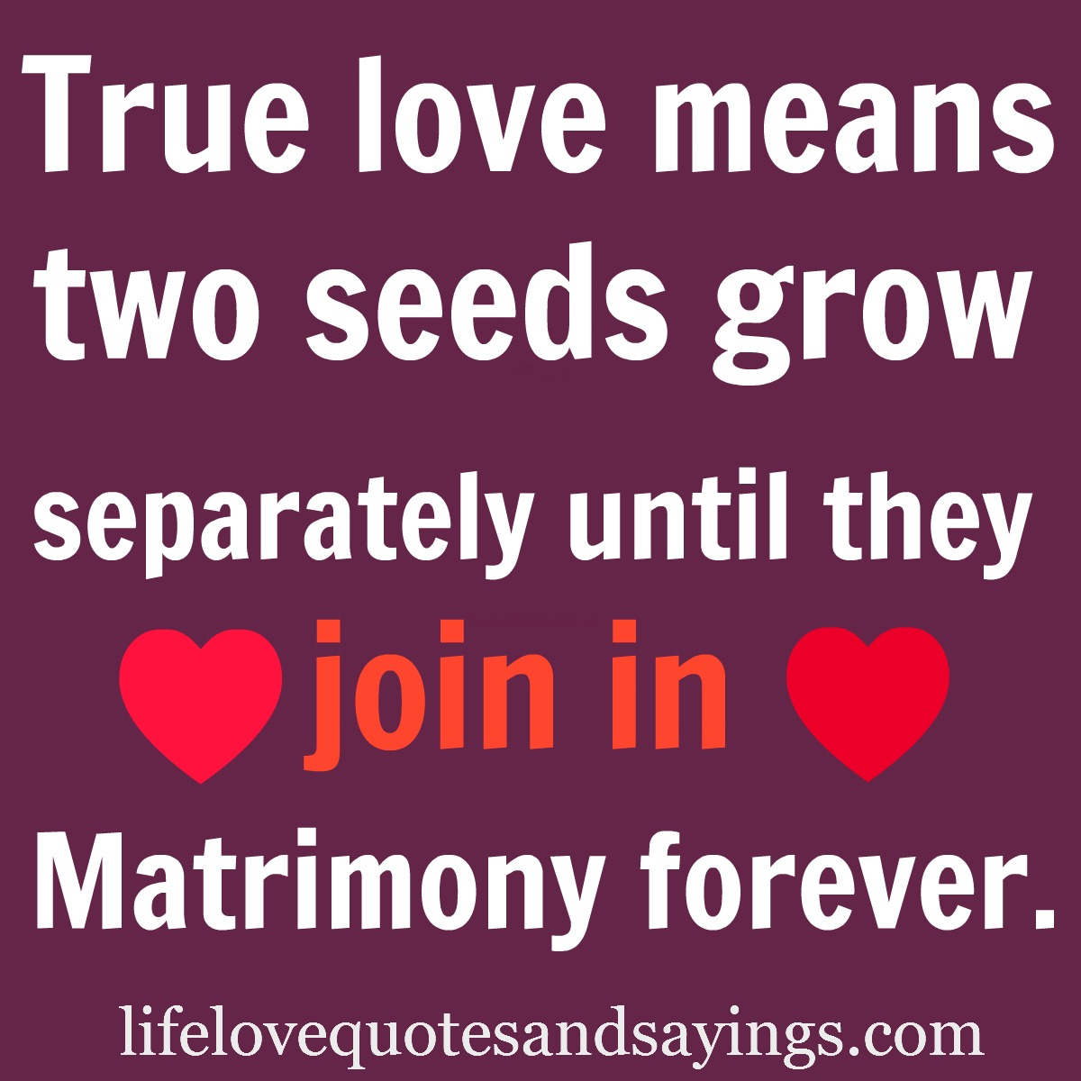 True Love Quotes And Sayings For Boyfriends. QuotesGram