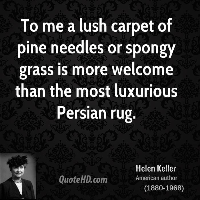 Carpet Quote: Overcoming Obstacles Famous Author Quotes. QuotesGram