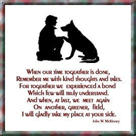 Pet Quotes Dog Funny
