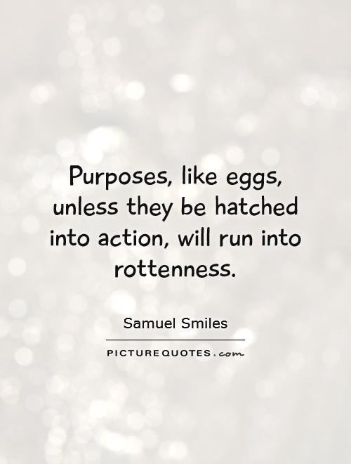 Egg Quotes Quotesgram