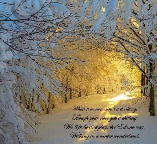 Winter Wonderland Quotes. QuotesGram