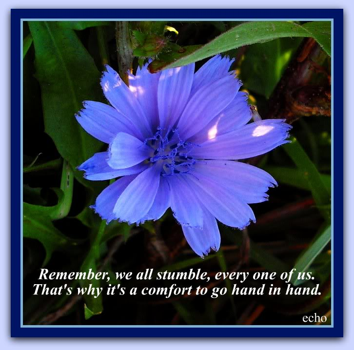 Inspirational Quotes About Flowers Quotesgram