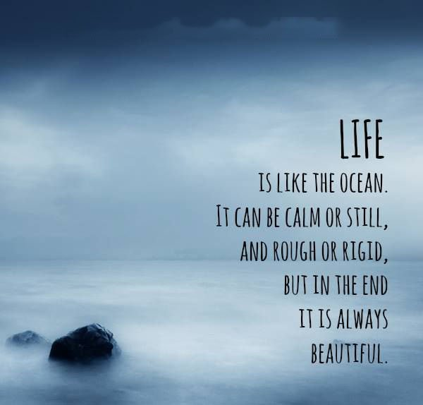 Life Is Like The Ocean Essay - image 6