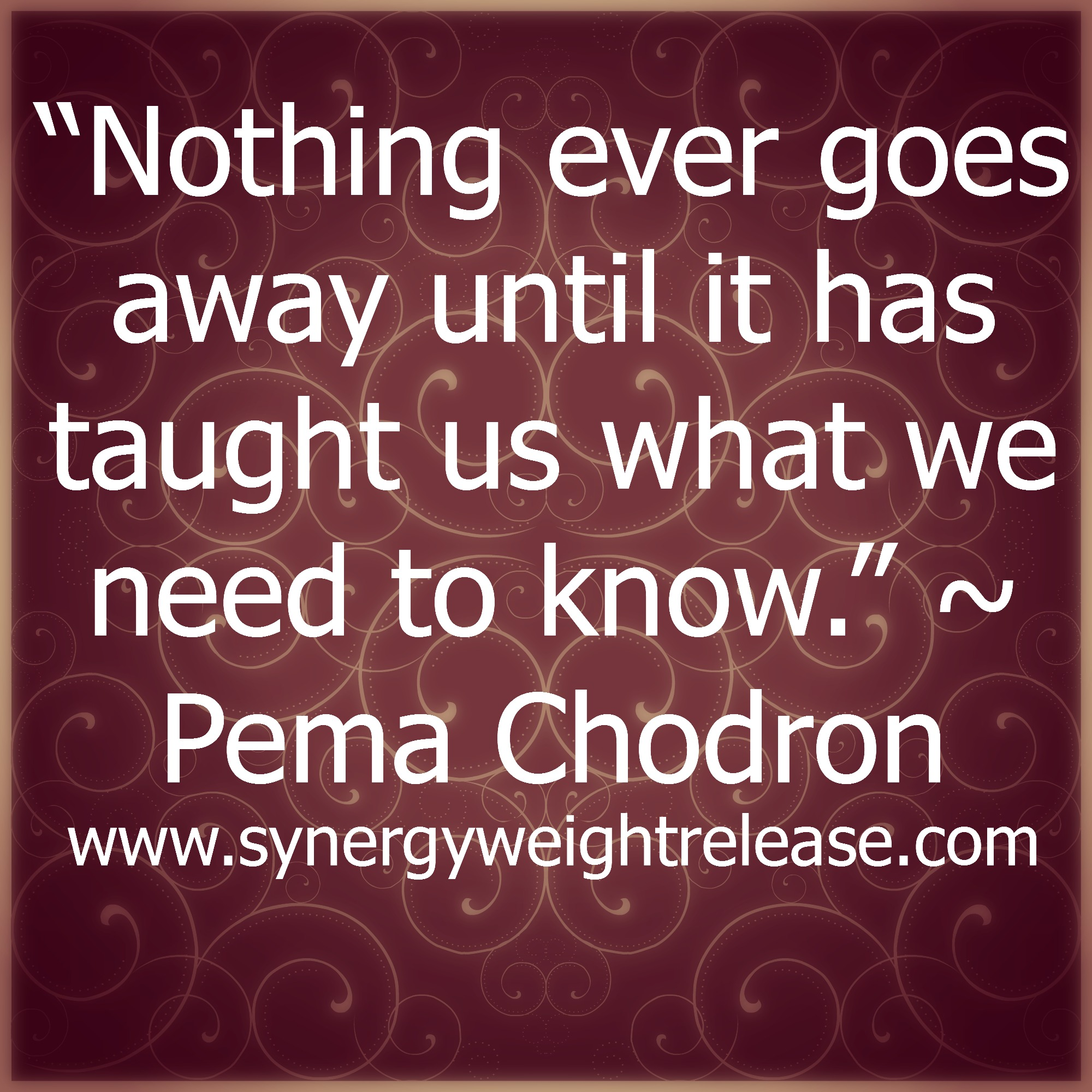 The Death Cure Quotes Quotesgram: Death Quotes Pema Chodron. QuotesGram