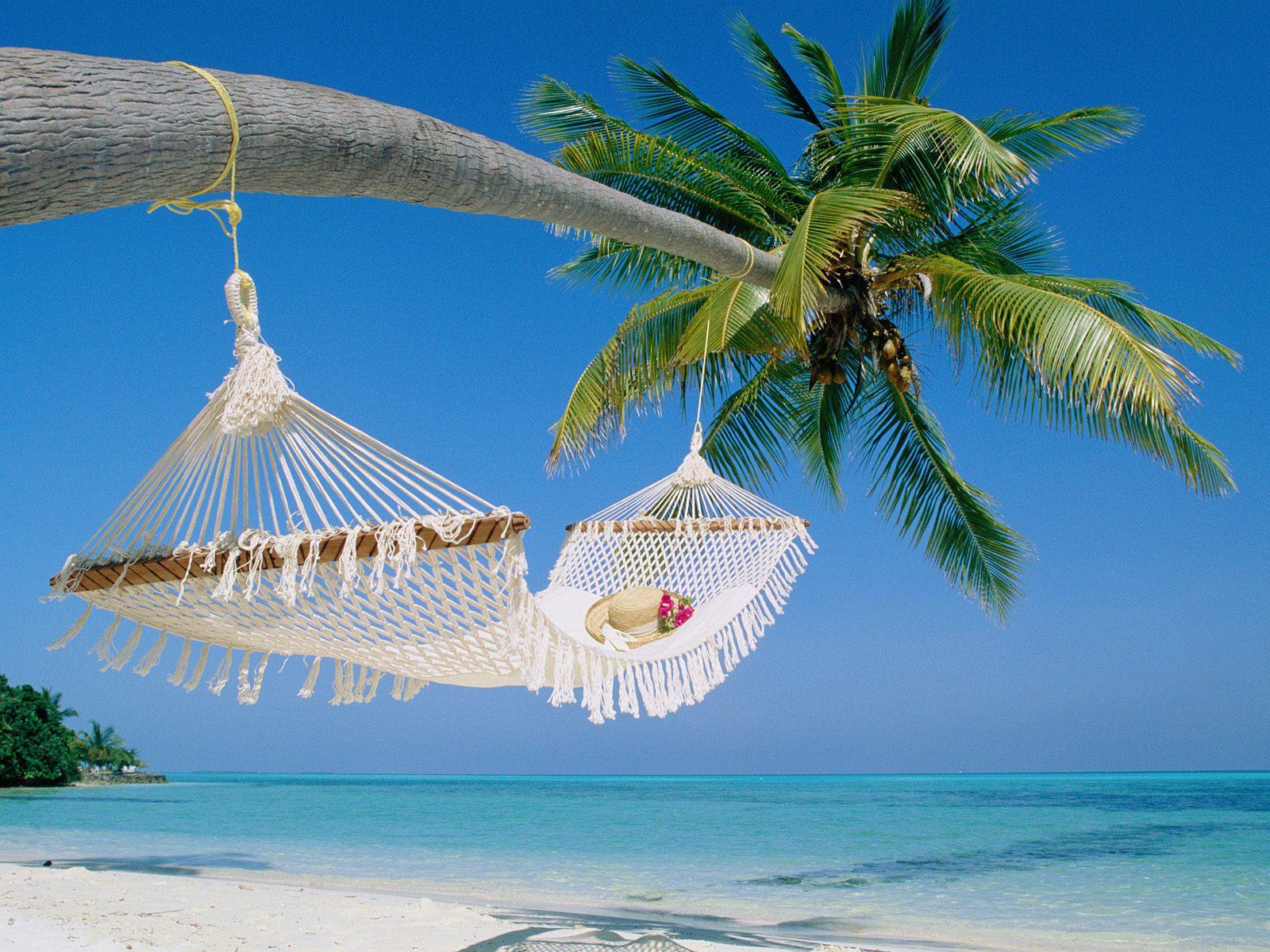 Paradise Island  Quetes