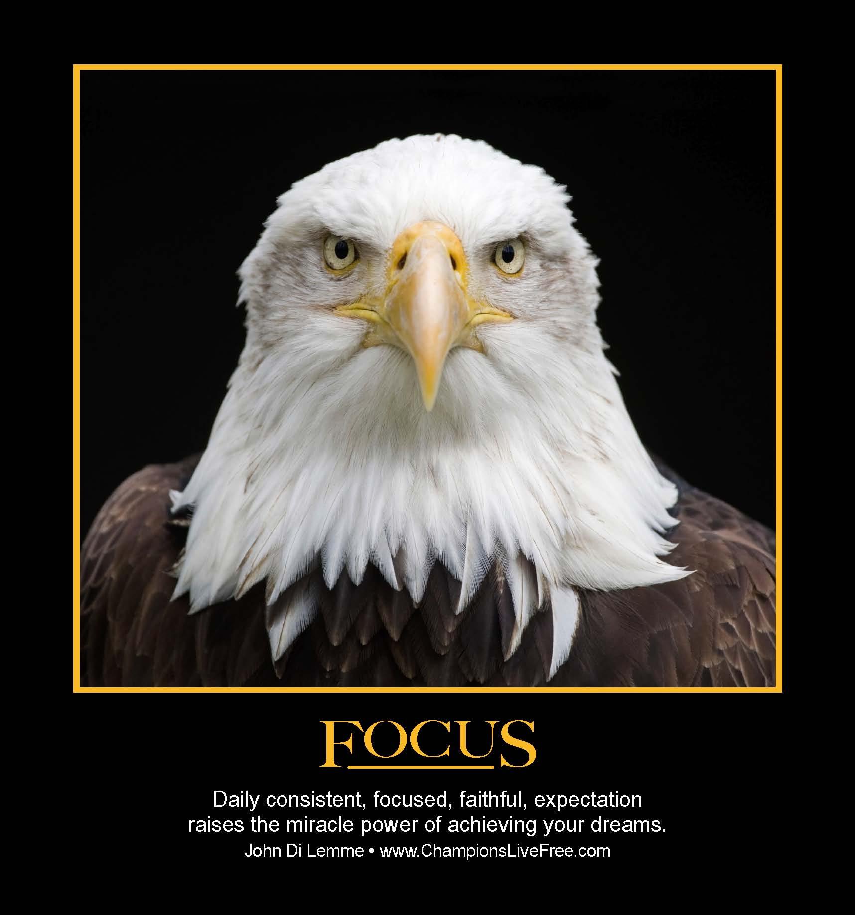 Inspirational Day Quotes: Focus On Success Quotes. QuotesGram