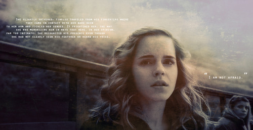 Hermione Harry Potter Quotes. QuotesGram