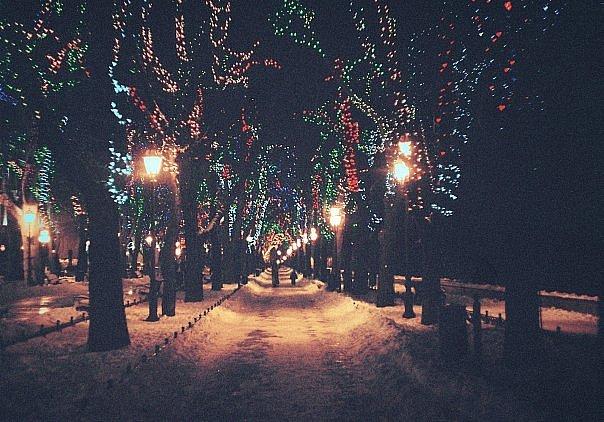 Winter Night Quotes Quotesgram
