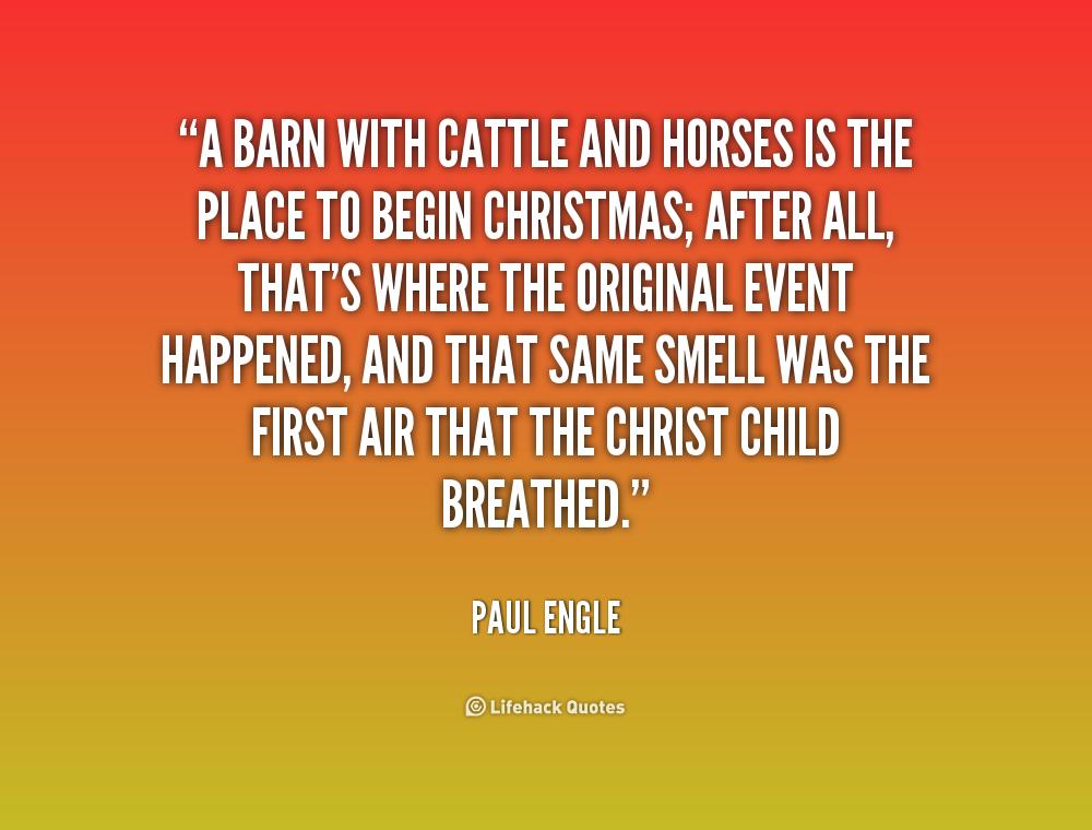 cattle quotes  quotesgram