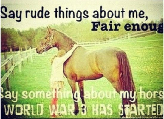 Horse Racing Quotes Funny. QuotesGram