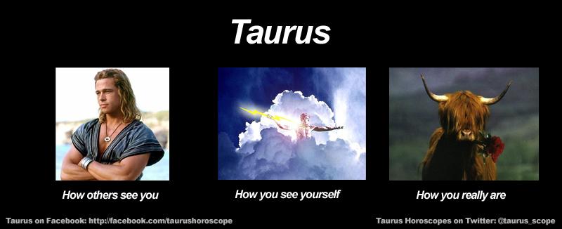 Funny Zodiac Memes : Taurus birthday meme quotes quotesgram