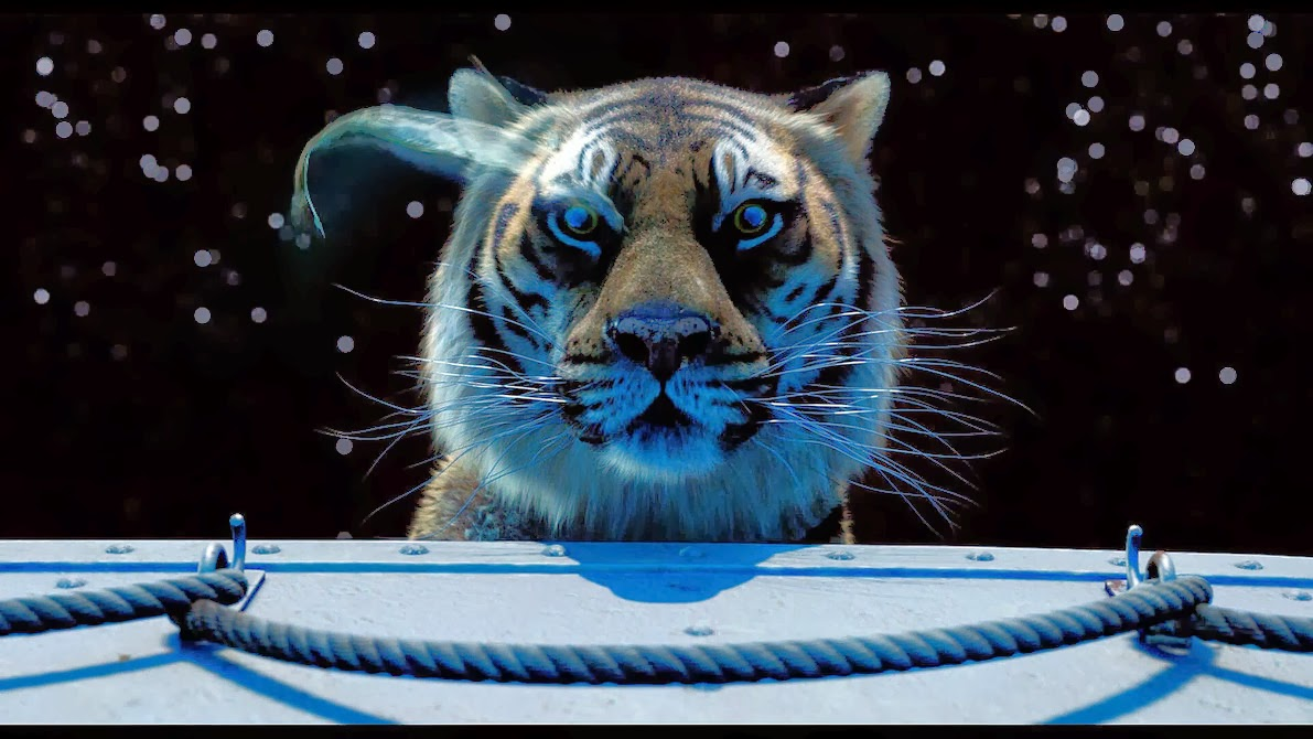 Life of pi movie quotes quotesgram for Life of pi characterization