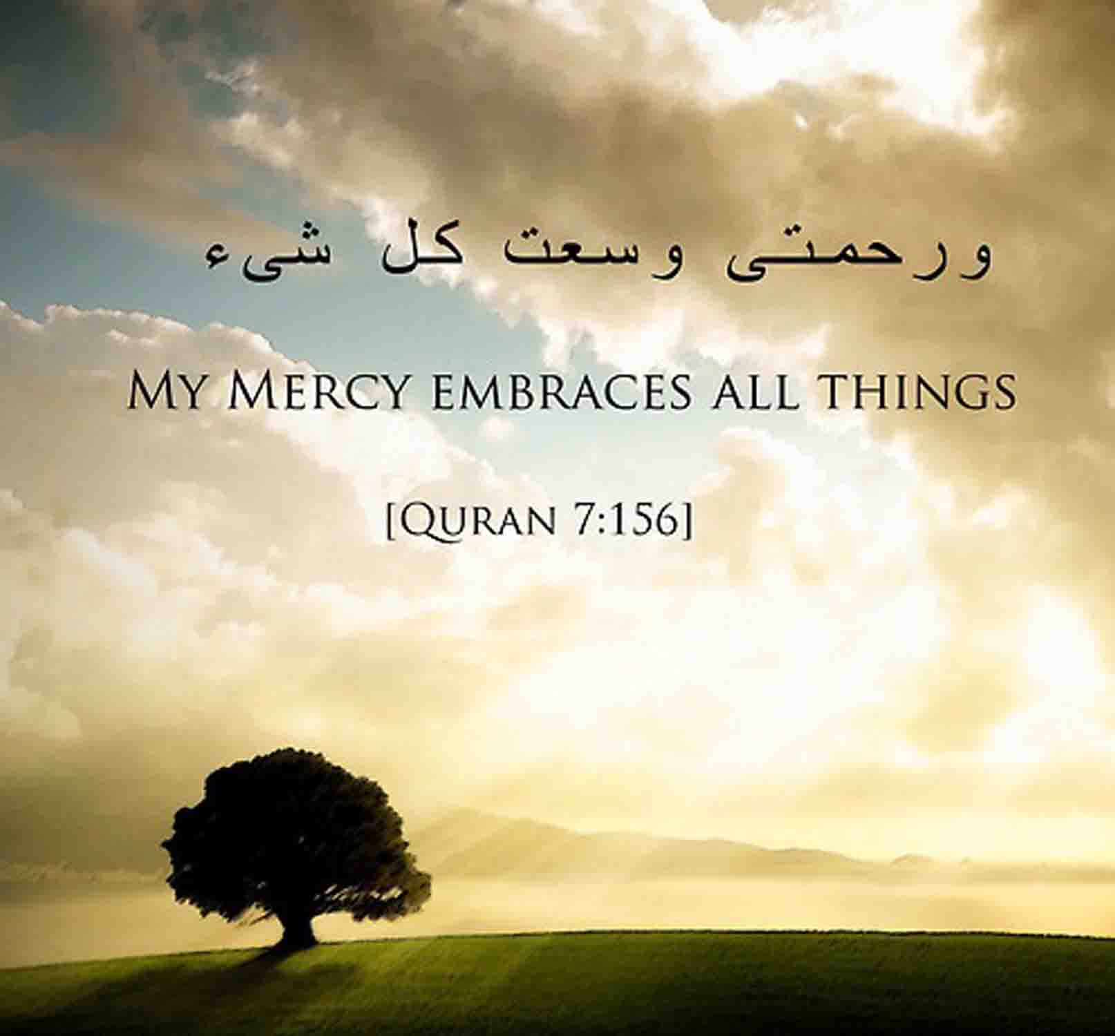 Islamic Quotes Hd Images: Quran Quotes About Peace. QuotesGram