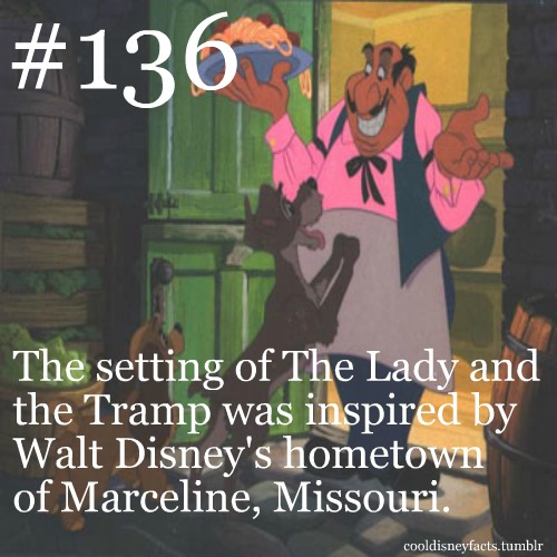 The setting of lady and the tramp was inspired by walt disney s