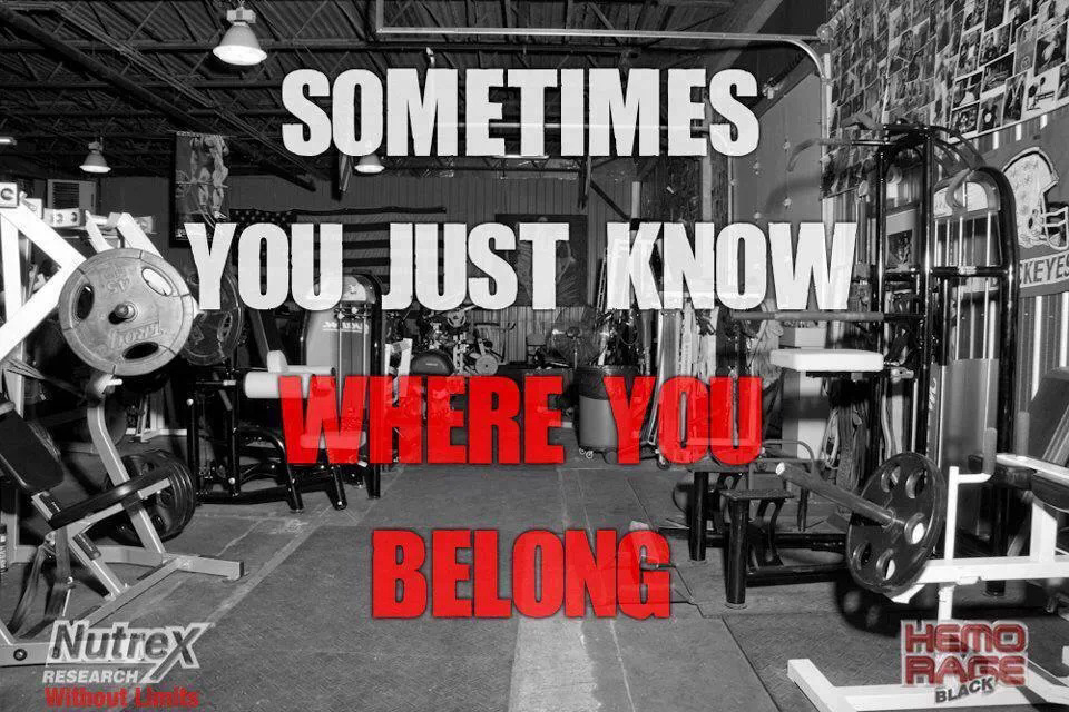 Where you belong quotes quotesgram