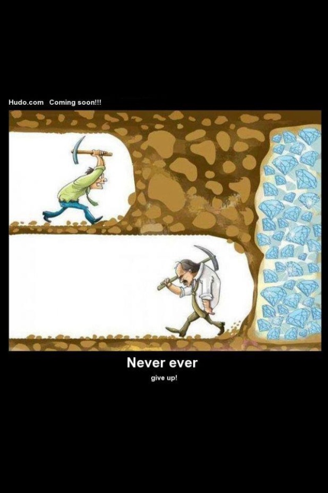 Never Give Up Funny Quotes. QuotesGram