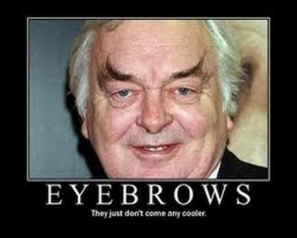 Funny Eyebrow Quotes Quotesgram