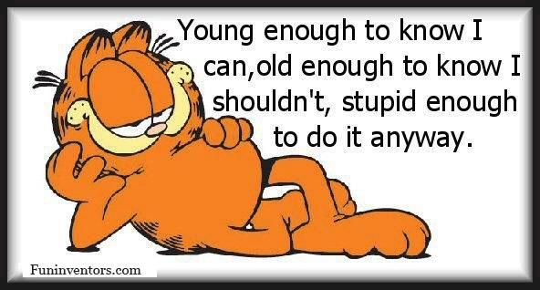 Garfield Monday Quotes. QuotesGram | 592 x 318 jpeg 96kB
