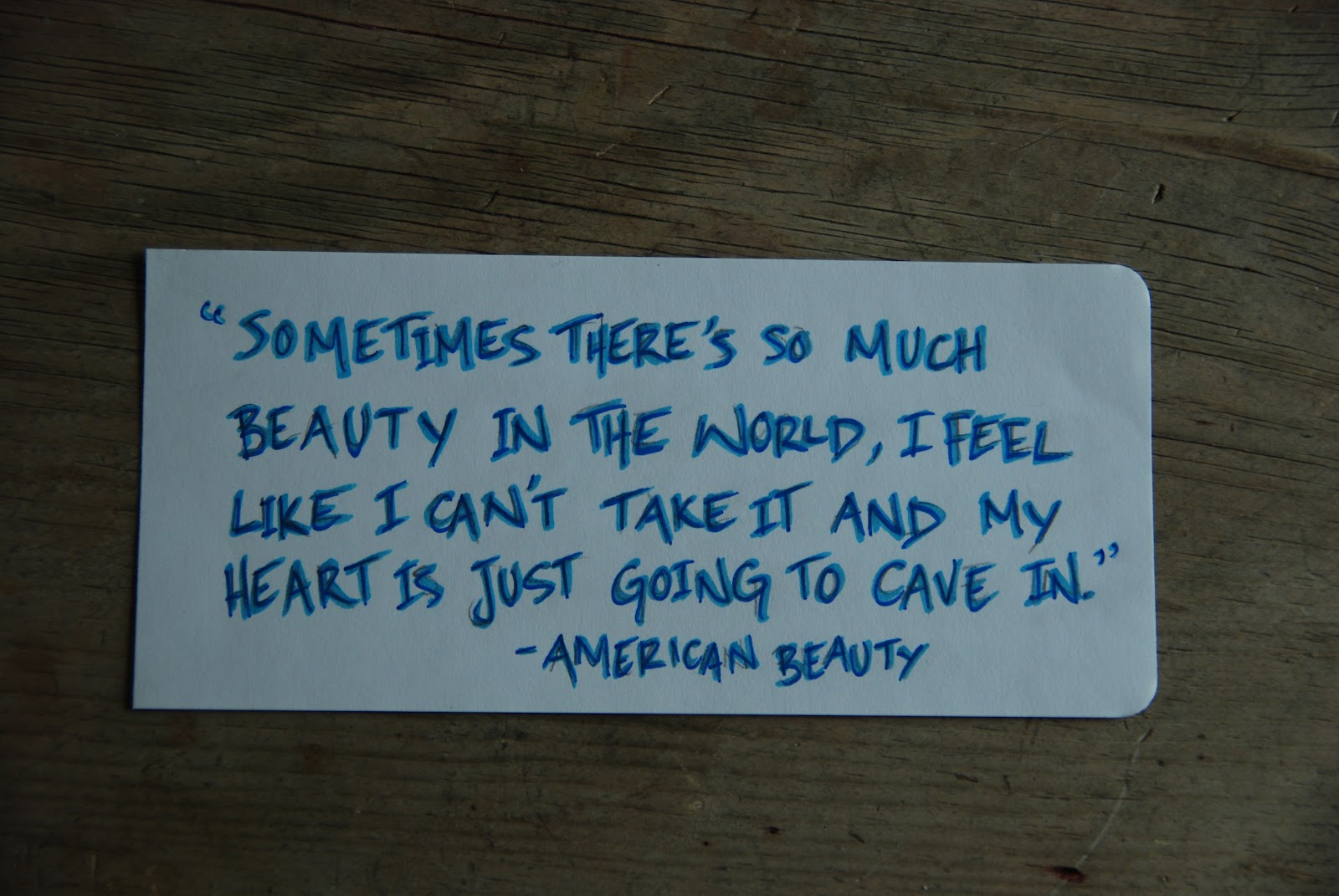 American Beauty Quotes. QuotesGram