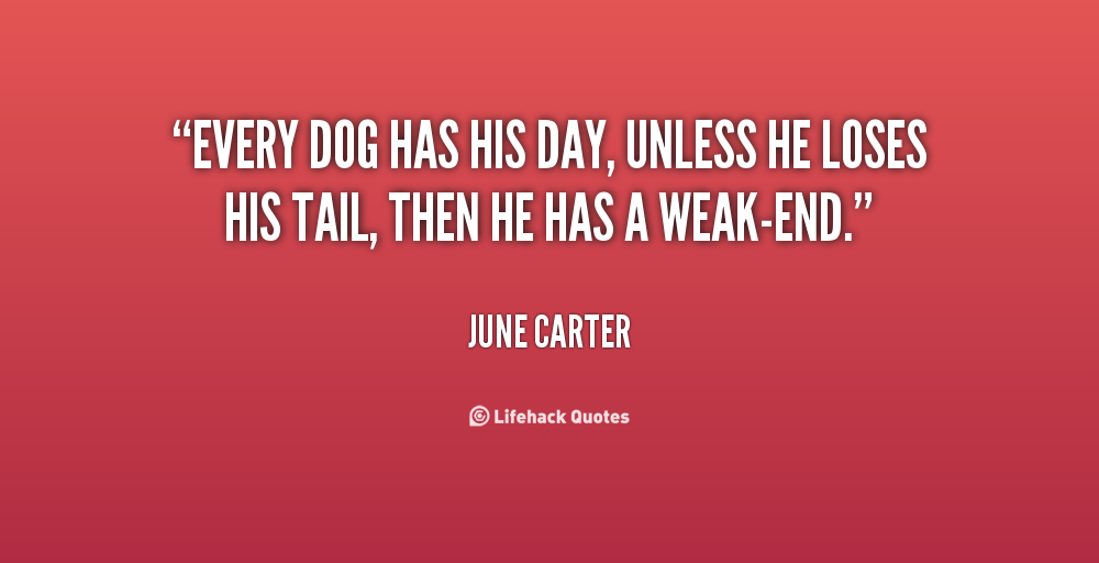 Every Dog Has Its Day Movie Quote