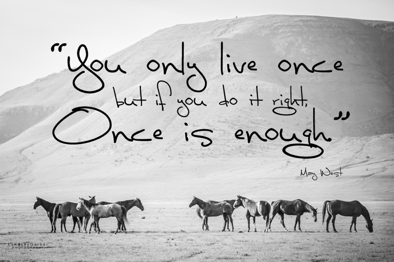 Inspirational Horse Quotes By Cowboys. QuotesGram